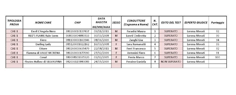 Risultati-CAE-1-16032013