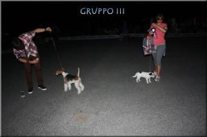 gruppo-3