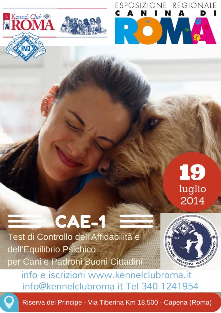 CAE-1