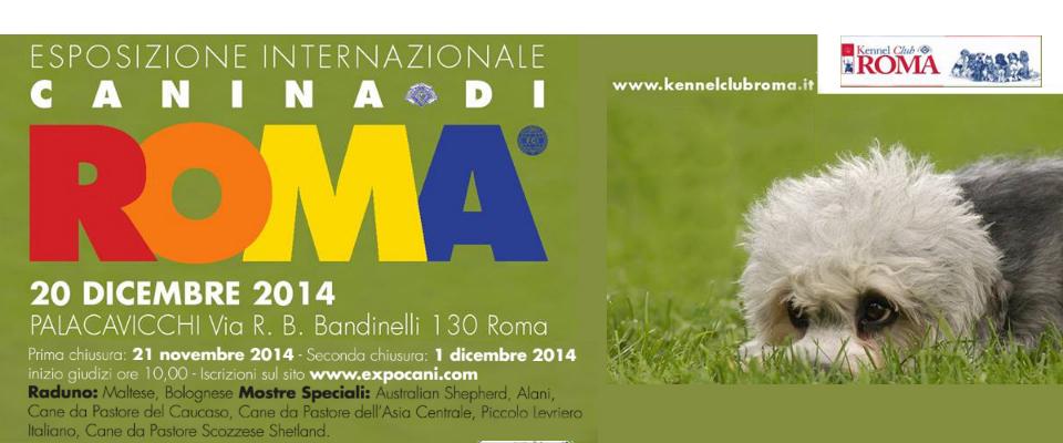 Internazionale di Roma