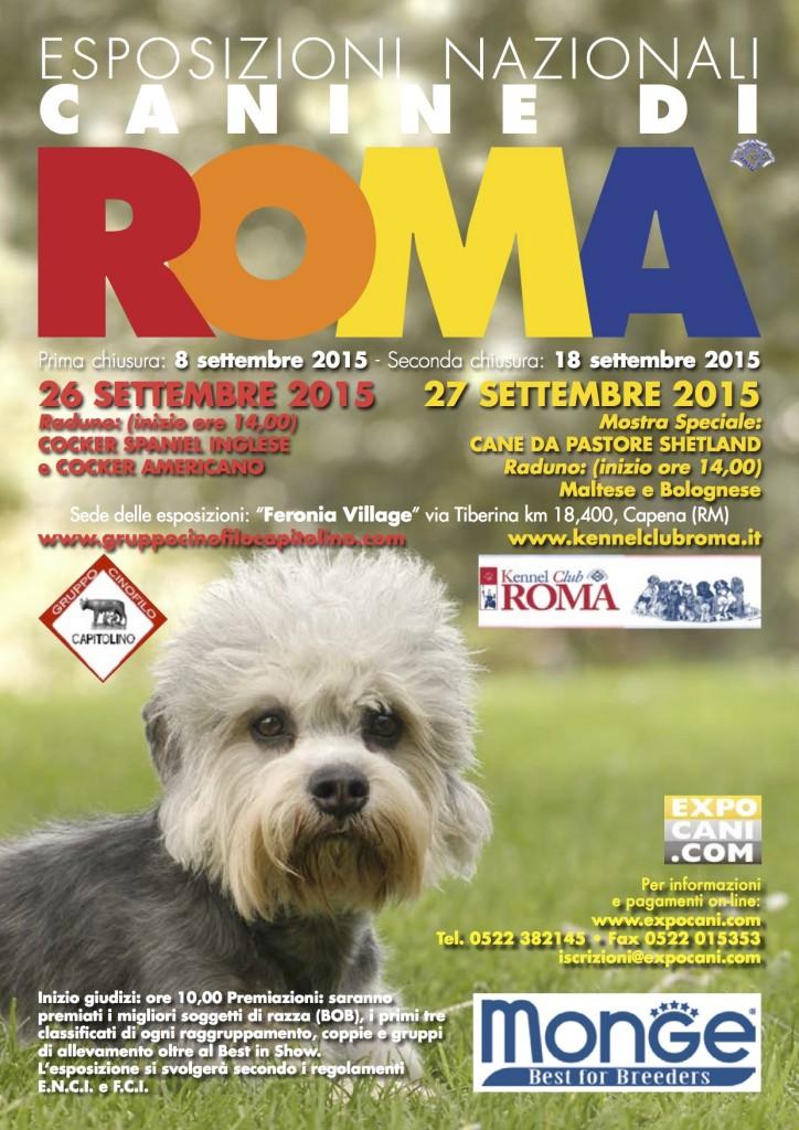 2015 nazionale 26 27 settembre kennel club roma for Cane da pastore della russia meridionale