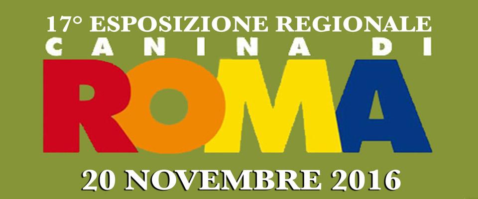 Regionale di novembre