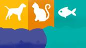 Negozio animali online per i vostri amici animali